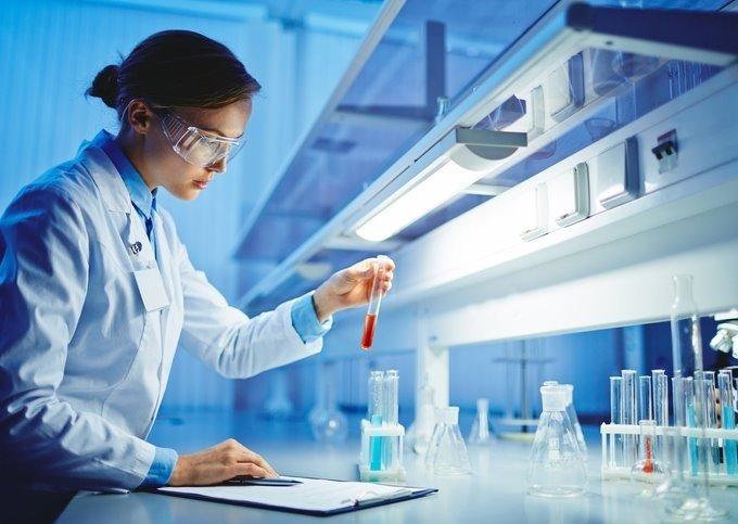 IMSA Insights stem building block to bridge the skills gap